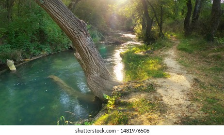 River deep in forest. Nature composition.
