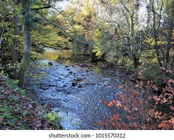 River Derwent at Gibside near Gateshead, England