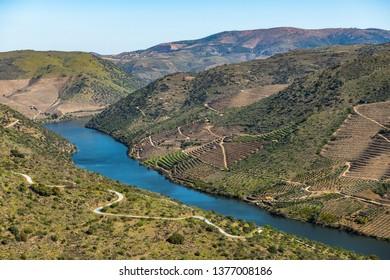 River Douro next to the mouth of the river Coa. Vila Nova de Foz Côa Municipality. Douro Region.