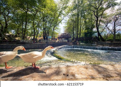 The river with ducks, small waterfalls and bridges at the center of traditional village Vrisses, Chania, Crete, on April 10, 2017