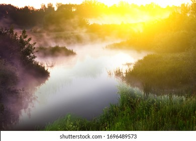 River in the early morning at dawn. Delicate dawn sky and fog rising above the water, lush greenery on the banks. Summer spring wild landscape by the river. Selective soft focus.