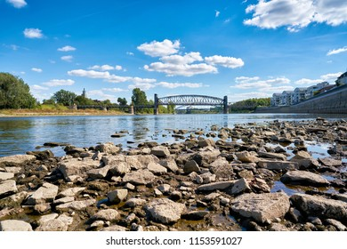 The river Elbe in Magdeburg at low tide due to a hot summer