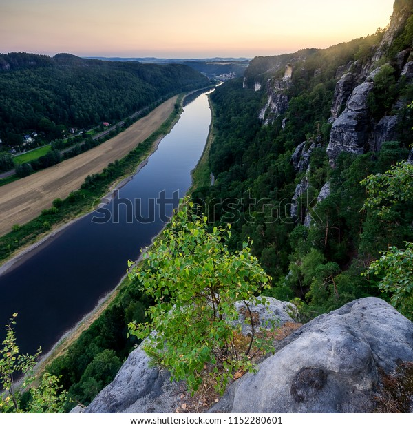 The river Elbe next to the Elbe sandstone mountains during sunset with a little growing on a rock  in front.