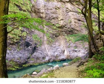 the river Erlauf at the Vorderer Tormaeuer, Lower Austria, Austria