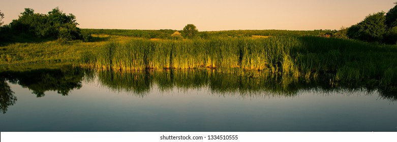 River and field with thickets of green shrubs in spring in the steppe at sunset. Web banner for your design. Ukraine. Europe.