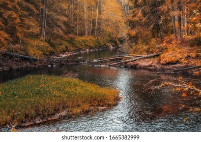 River flow  in the autumn forest of Karelia, Russia