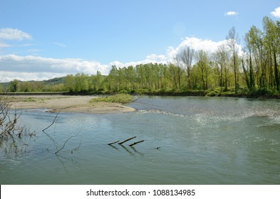 River is flowing along an alluvial island and its riverbanks overgrown with trees.