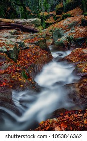 River flowing through colorful autumnal gorge