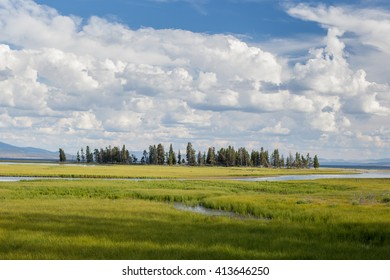 River flowing through grassy meadow in Yellowstone National Park /  Island in Yellowstone National Park /  River flowing through grassy meadow National Park