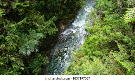 River flowing through Lynn Canyon in Vancouver, BC, Canada