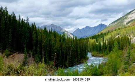 river flowing through the wooded valley