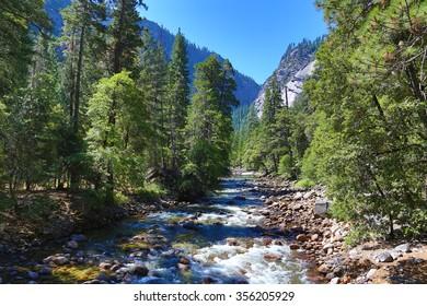 River flowing in Yosemite Park