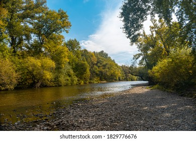 The Nišava river and forest in early autumn