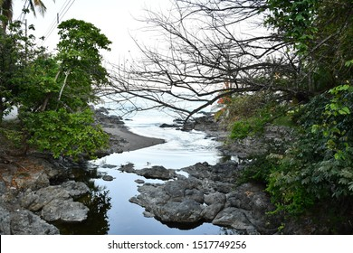river in forest, photo as a background taken in Nicoya, Costa rica central america , montezuma beach