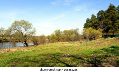 River and forest in spring