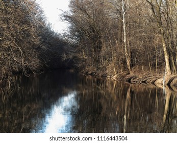 River and Forest - Winter river through a leafless forest with reflections.