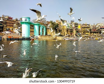 River Ganges, Varanasi, Uttar Pradesh, India; 30-Jan-2019; Siberian migratory birds over river Ganges in Varanasi, Uttar Pradesh, India