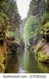 River gorges with rocks and trees along it in Czech republic