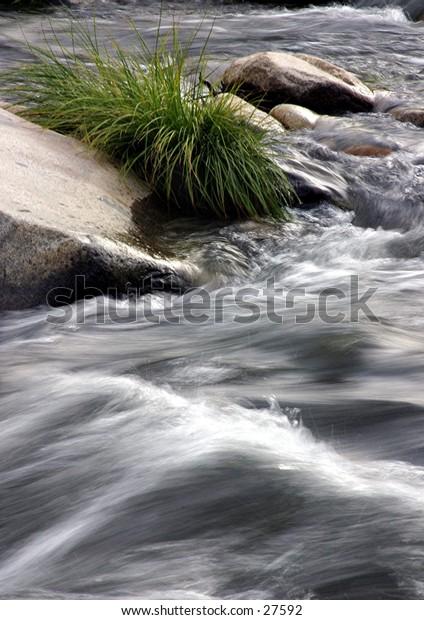 river grass rock
