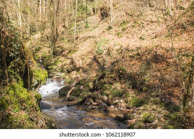 River in the Hotzenwald, Black Forest, Germany