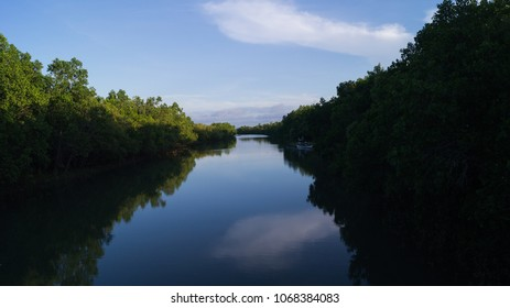 A river inside a mangrove park in Kalibo, Aklan, Philippines. Front view of the scenery.