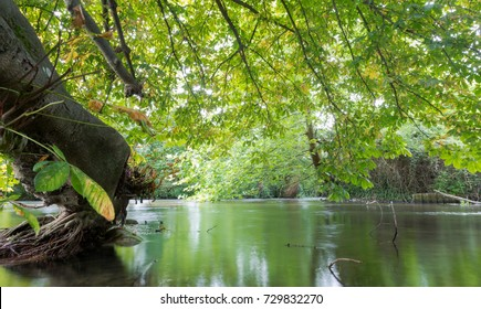 River Itchen in Eastleigh, Hampshire, UK. Horizontal, low angle perspective with long exposure
