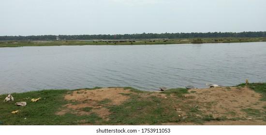 River in kerala. River name is baratha puza. Foumer river in kerala India.