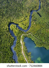 River and lake in the forest. Aerial landscape from drone