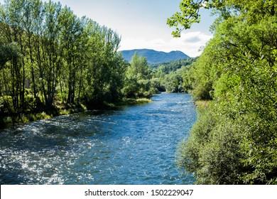 river landscape among green trees