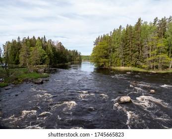 River landscape in spring. Farnebofjarden national park in Sweden.