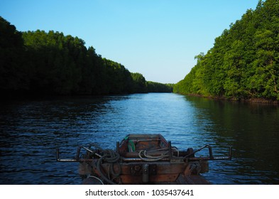 River and Mangroves. photo of nature, landscape in autumn. boat in Thailand