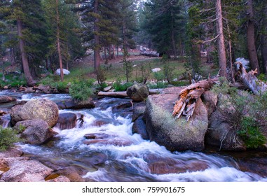 A river in motion surrounded by trees, and rocks during the day.