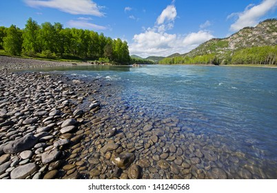 The river in the mountains on a sunny summer day