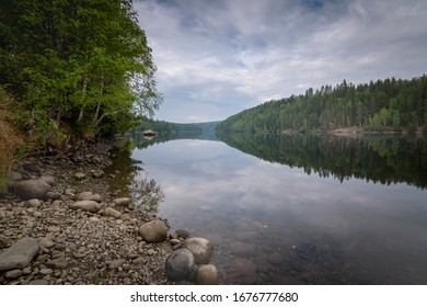 River Norway with beautiful reflection with forest