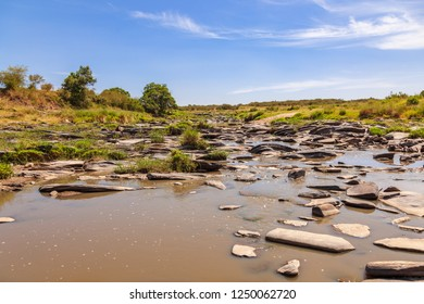 River on the African savannah that begins to dry out