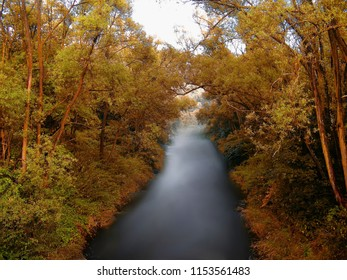 River Opava flowing between tree branches at evening. Relaxing nature, lush greenery. Blurred watter surface ,creative post processing.