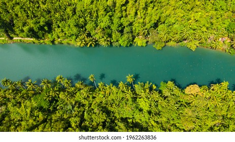 The river in the rainforest among the green lush vegetation. Loboc River view from the top. Bohol, Philippines.