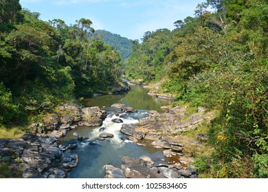 River in the Ranomafana forest