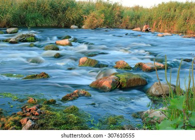 River, Rapid, Flowing, Stream, Reed, Water, Rock