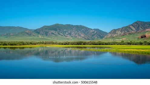 River reflection