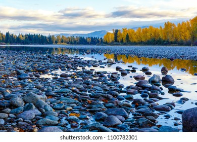 River rocks and color reflection on Flathead River, Montana in autumn with colorful fall trees