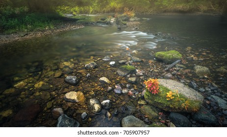 River and rocks on a misty summer morning