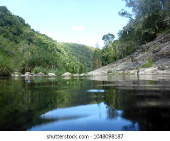river running through the beautiful Tsitsikamma National Park along the Garden Route in South Africa