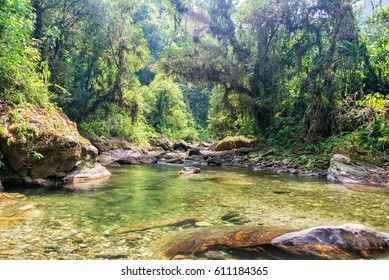 River running through the jungle in the Sierra Nevada de Santa Marta in Colombia