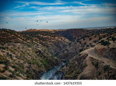 River running through a valley with birds flying over