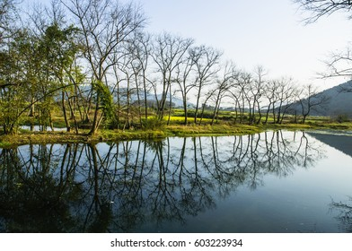 The river scenery