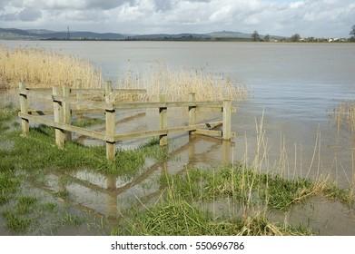 River Severn at Upper Framilode floods on Spring Tide, Gloucestershire