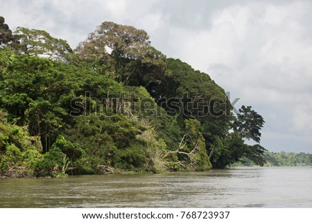 River Side at Sepik River - Papua New Guinea