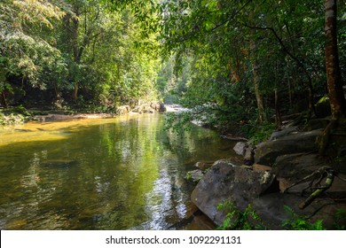River in the Sinharaja Forest Reserve,  a national park in Sri Lanka. UNESCO World Heritage