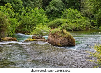 The river Sorgue with rocks and trees, Fontaine de Vaucluse, Provence, Luberon, Vaucluse, France